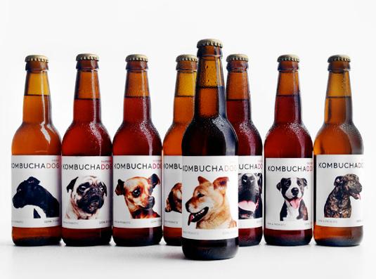 58 mẫu thiết kế bao bì tuyệt đẹp - Kombucha Dog