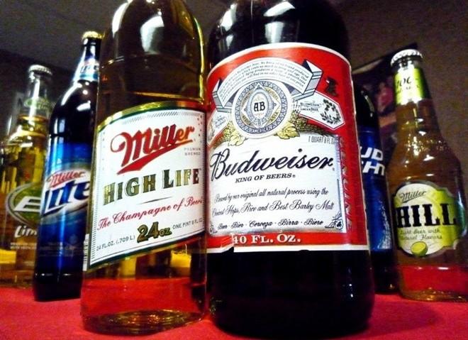 Budweiser và Miller