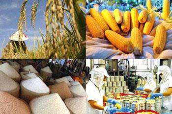 Thiếu sản phẩm thương hiệu riêng: Xuất khẩu khó cạnh tranh bền vững