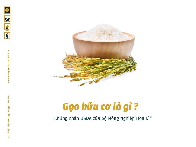 Hình ảnh nhận diện độc đáo của Gạo Tâm Việt