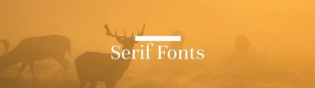 Nếu bạn đang tìm hiểu về font chữ thì bài viết này dành cho bạn