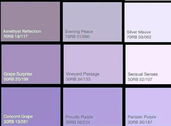 Màu sắc là gì? Màu sắc có những loại nào?
