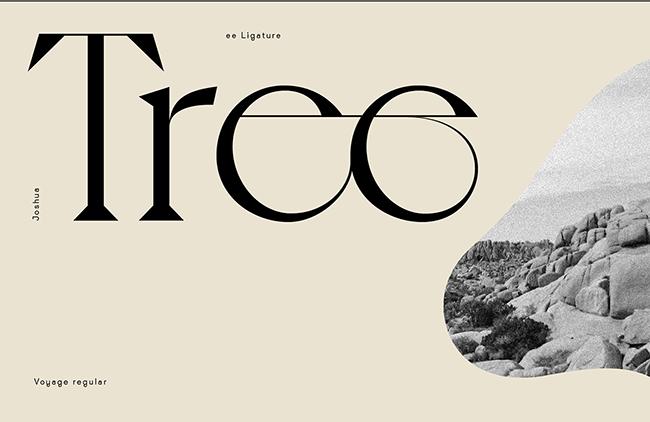 Gợi ý Typeface Voyage cho những thiết kế đồ họa mùa hè