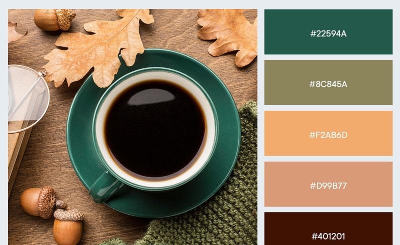 Gợi ý bảng màu phối thiết kế quảng cáo mùa thu