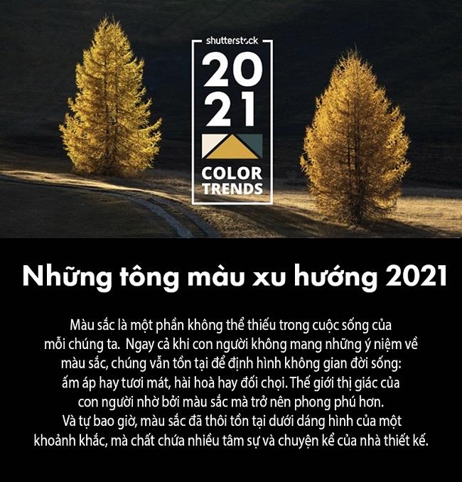 Tổng hợp dự đoán xu hướng màu 2021 từ Shutterstock