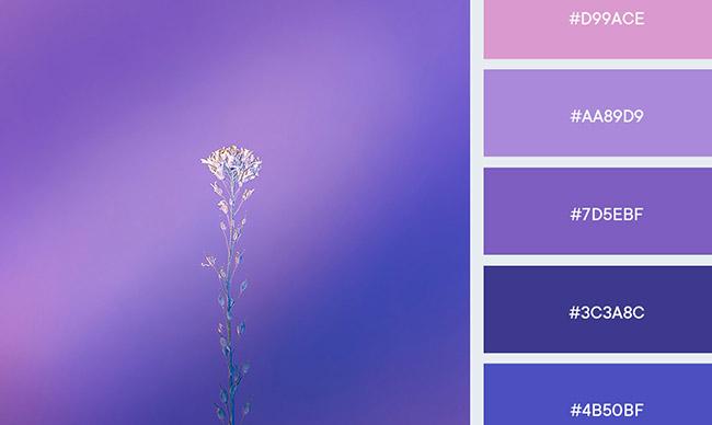 Những bảng màu tuyệt vời cho thiết kế logo chuyển tiếp màu Gradient