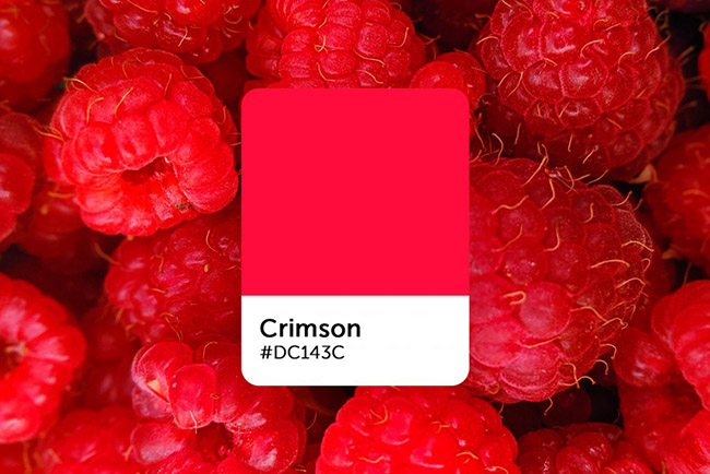 Cách ứng dụng màu đỏ Crimson vào thiết kế hiệu quả